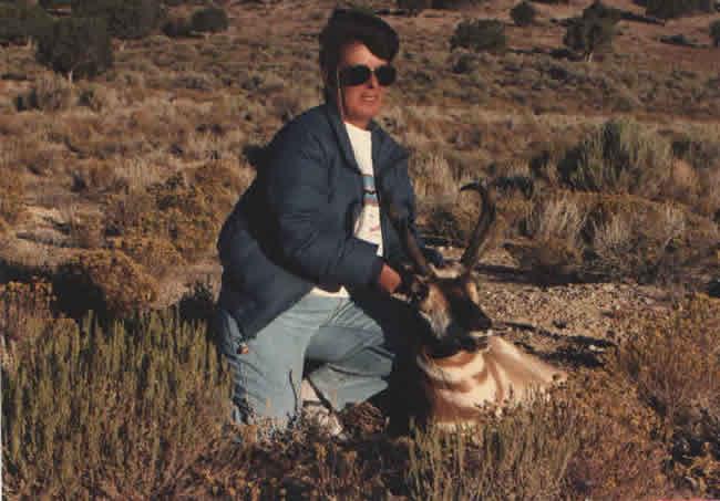 antelope_115